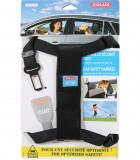 Cinturones seguridad